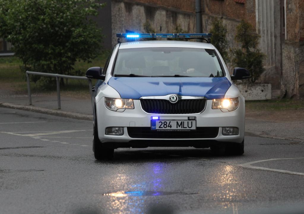 TASUB TEADA! Politsei tegevuspõhimõtted lähisuhtevägivalla vastu võitlemisel