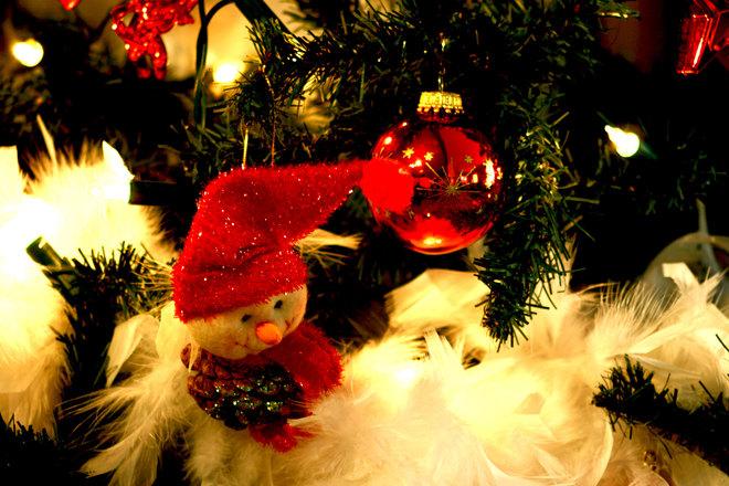 HUVITAVAD FAKTID JÕULUDE KOHTA! Seitse huvitavat fakti jõulude kohta