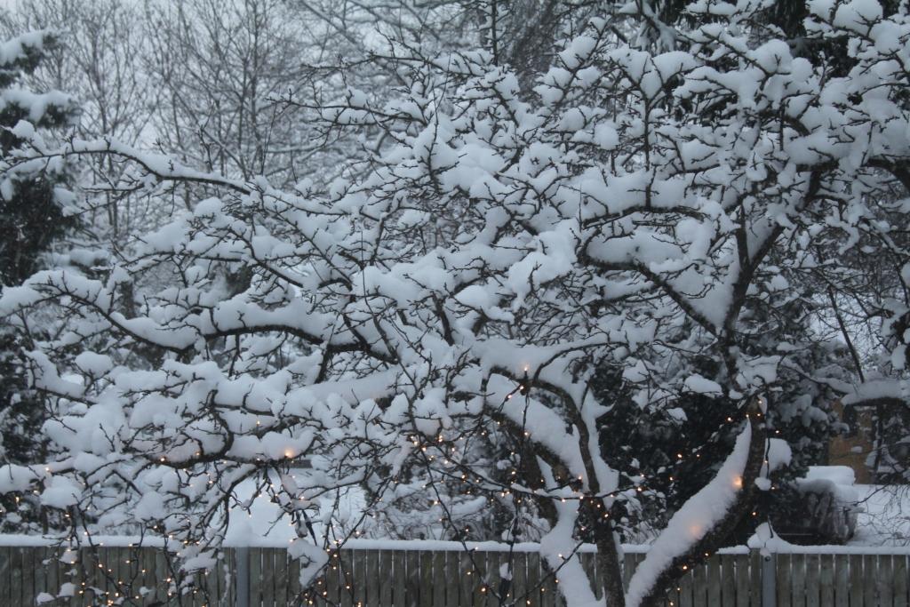 MUPO NÕUANDED! Vajadusel tuleb lund koristada ja libedusetõrjet teha lisaks hommikule ka päeva jooksul