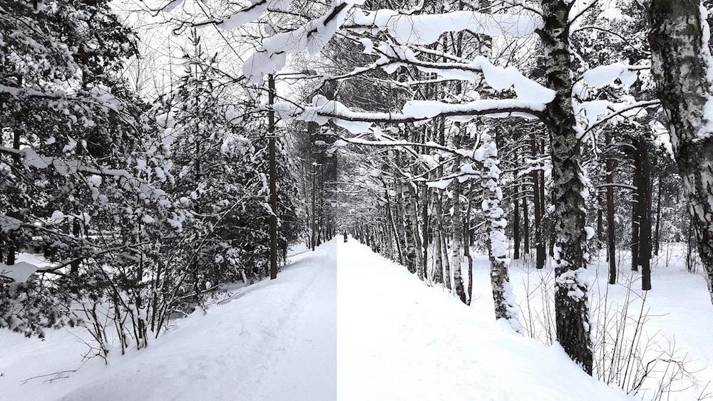 FOTOGRAAF ANNAB NÕU! Kuidas teha nutitelefoniga ilusaid talviseid pilte?