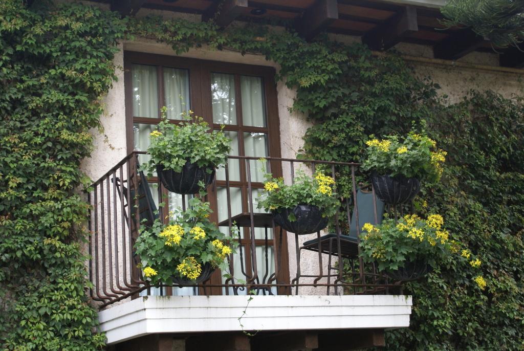 NIPID! Kuidas luua terrassile hubane linnaaed