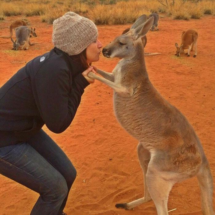 Foto: The Kangaroo Sanctuary Alice Springs