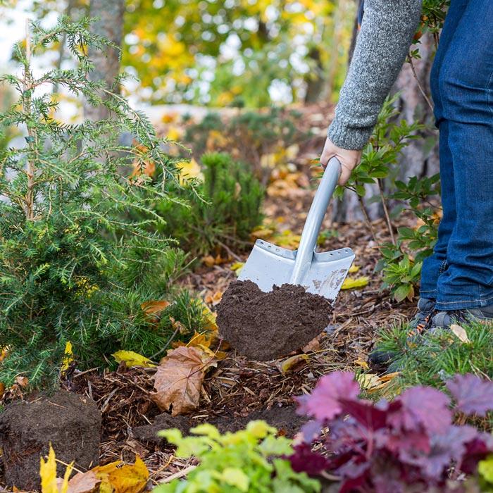 Millised aiatööd tuleks enne talve ära teha?