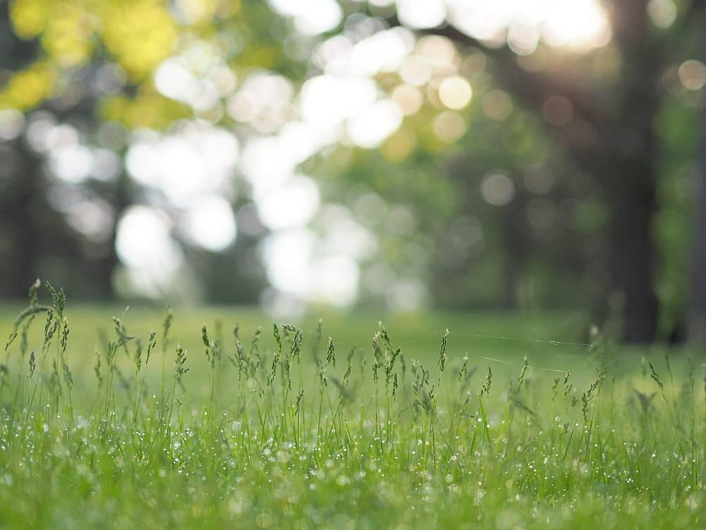 Mida on kasulik teada enne maakütte paigaldamist?