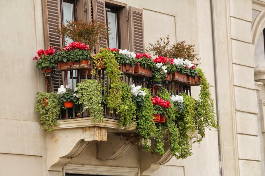 LINNAAEDNIKU ABC! Nõuanded, kuidas muuta korterirõdu lopsakaks aiaks