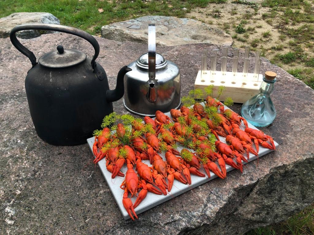Wähja Festival
